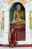 Myanmar, Burma.  Shwedagon Pagoda, Yangon, Rangoon.  Buddhist Monk.  Behind him a Buddha Statue demonstrates the mudras (hand gestures) of earth-touching (bhumisparsha) and wisdom (dhyana).