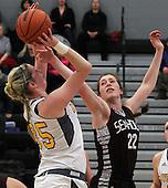 Auburn Hills Avondale vs Birmingham Seaholm, Girls Varsity Basketball, 3/2/16