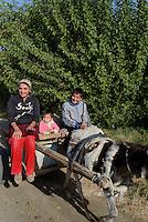 Eselwagen bei Chiwa, Usbekistan, Asien<br /> donkey cart near Chiwa, Uzbekistan, Asia