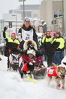 Ed Stielstra leaves the 2011 Iditarod ceremonial start line in downtown Anchorage, during the 2012 Iditarod..Jim R. Kohl/Iditarodphotos.com