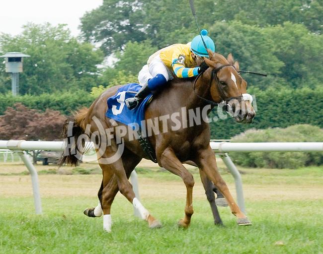 Starry winning at Delaware Park on 7/21/12