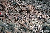 Bright Angel trail, Grand Canyon, National Park, Mules, Donkeys, Riders. switchbacks,
