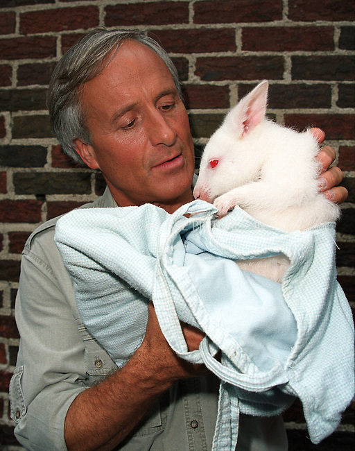 """Popular animal trainer JACK HANNA, who also has his own TV show, """"Jack Hanna's Animal Adventures,"""" poses with a baby Kangaroo as he arrives at Ed Sullivan Theatre to make an appearance on the """"Late Show With David Letterman."""" New York, June 13, 2002. Please byline: Alecsey Boldeskul/NY Photo Press.   ..*PAY-PER-USE*      ....NY Photo Press:  ..phone (646) 267-6913;   ..e-mail: info@nyphotopress.com"""