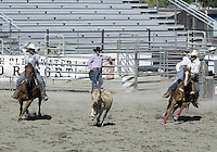 Team Roping Pro Rodeo