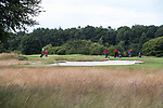 GROESBEEK - Rood Zwenkgras. Golfbaan Het Rijk van Nijmegen. COPYRIGHT  KOEN SUYK