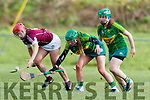 Michele Costello Kerry in action against Sheila McGrath Westmeath in the 2019 Camogie League Division 2 at John Mitchells GAA grounds in Tralee, on Sunday.