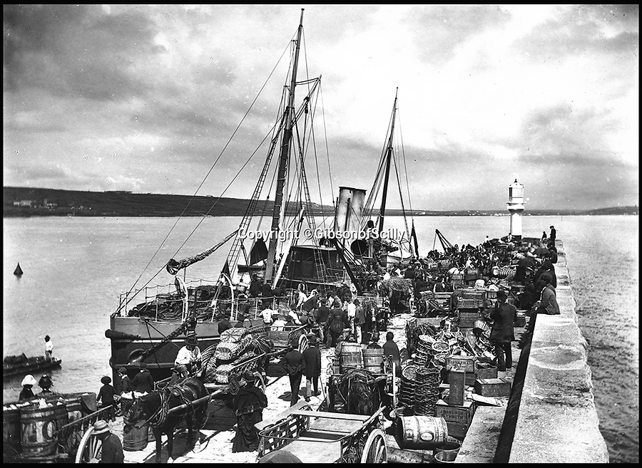 BNPS.co.uk (01202 558833)<br /> Pic: GibsonOfScilly/BNPS<br /> <br /> Steamer at Penzance quay....<br /> <br /> An archive of eye-opening photographs documenting the grim reality of Poldark's Cornwall has emerged for sale for &pound;25,000.<br /> <br /> More than 1,500 black and white images show the gritty lives lived by poverty-stricken families in late 19th and early 20th century Cornwall - around the same time that Winston Graham's famous Poldark novels were set.<br /> <br /> The collection reveals the lowly beginnings of towns like Rock, Fowey, Newquay and St Ives long before they became picture-postcard tourist hotspots.<br /> <br /> Images show young filth-covered children playing barefoot in squalid streets, impoverished families standing around outside the local tax office, and weather-beaten fishwives tending to the day's catch.<br /> <br /> The Cornish archive, comprising 1,200 original photographic prints and 300 glass negative plates, is tipped to fetch &pound;25,000 when it goes under the hammer as one lot at Penzance Auction House.