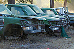 Derelict national park cars, Kafue National Park, Zambia