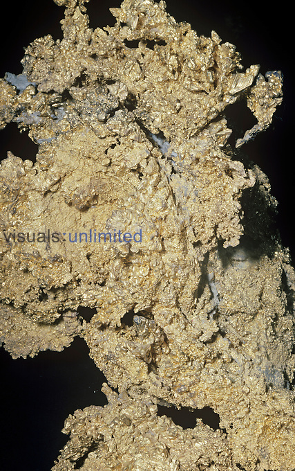 Native Gold from the historic gold country in the Central California Sierra Nevada foothills, USA.