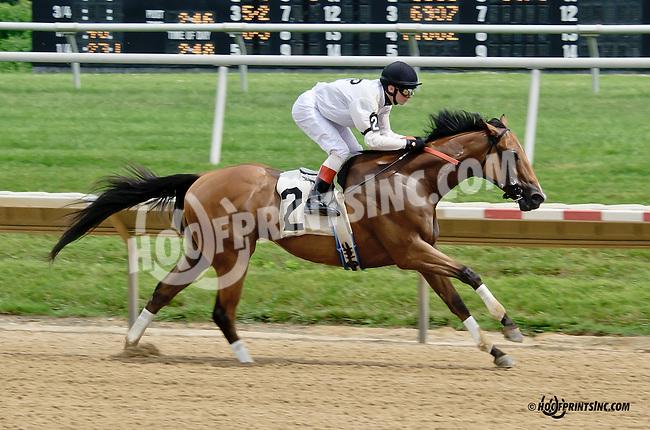 Distiller winning at Delaware Park racetrack on 6/26/14