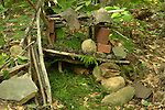 gnome houses.Eagles Mere, PA,.Summer project at Conservancy