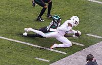 wide receiver DeVante Parker (11) of the Miami Dolphins fängt den Pass und verletzt sich dabei - 08.12.2019: New York Jets vs. Miami Dolphins, MetLife Stadium New York