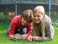 Mädchen, Kinder, Freundinnen mit einer Landschildkröte, Land-Schildkröte, Schildkröte im Garten, Testudo, land tortoises