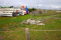 Alligator fabricated out of stones and located near the canoe rental headquarters located at Arthur Marshall Loxahatchee Preserve, Boynton Beach, Florida.