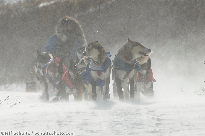 Michelle Phillips team breaks drifted in trail several miles after leaving the Unalakleet checkpoint on Monday March 16, 2015 during Iditarod 2015.  <br /> <br /> (C) Jeff Schultz/SchultzPhoto.com - ALL RIGHTS RESERVED<br />  DUPLICATION  PROHIBITED  WITHOUT  PERMISSION