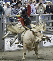 "29 August, 2004: PRCA Rodeo Bull Rider Rick Wock Jr ranked 28th in the world  riding the bull ""Schyster"" during the PRCA 2004 Extreme Bulls competition in Bremerton, WA."