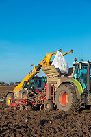 Loading wheat seed into drill - Lincolnshire, Janiuary