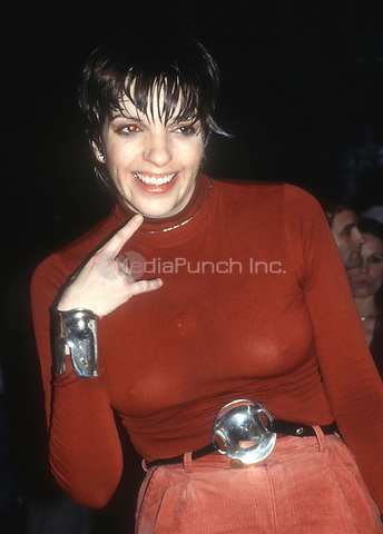 1978 <br /> New York, NY<br /> Liza Minnelli at Studio 54<br /> Credit: Adam Scull-PHOTOlink/MediaPunch