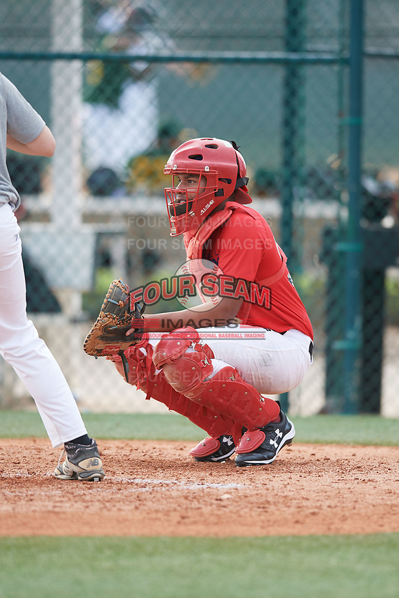 Rafael Mejia Ulerio (57), from Beltsville, Maryland, while playing for the Red Sox during the Baseball Factory Pirate City Christmas Camp & Tournament on December 27, 2017 at Pirate City in Bradenton, Florida.  (Mike Janes/Four Seam Images)