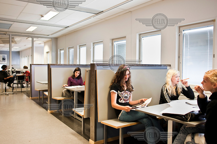 Students of different age levels study in the same classroom at a Kunskapsskolan school in Stockholm. Kunskapsskolan schools are not run by the government and aim to give students a lot of freedom in their studies. They provide education for children aged 10 to 19.