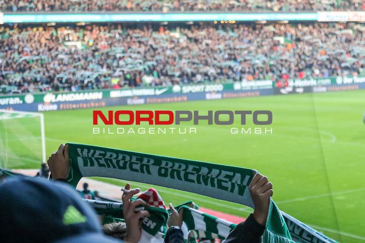 28.11.2015, Weser-Stadion, Bremen, GER, 1.FBL, Werder Bremen vs Hamburger SV, <br /> <br /> im Bild / picture shows<br /> Fans mit Fan Schals in Gruen-Weiss, Querformat<br /> <br /> Foto &copy; nordphoto / Ewert