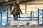 Stapleford Abbotts. United Kingdom. 24 November 2019. Class 11. Unaffiliated showjumping. Brook Farm training centre. Stapleford Abbotts. Essex. UK. Credit Garry Bowden/Sport in Pictures.~ 24/11/2019.  MANDATORY Credit Garry Bowden/SIP photo agency - NO UNAUTHORISED USE - 07837 394578