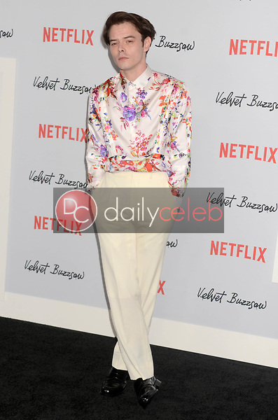 """Charlie Heaton<br /> at the """"Velvet Buzzsaw"""" Los Angeles Premiere Screening, Egyptian Theater, Hollywood, CA 01-28-19<br /> David Edwards/DailyCeleb.com 818-249-4998"""