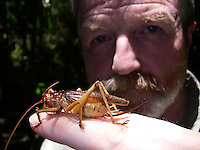 UK, entemolygist, George McGavin, tucks into an insect salad. McGavin has been eating insects for 25 years and says that it is inevitable that all humans will have to eat insects in the future.