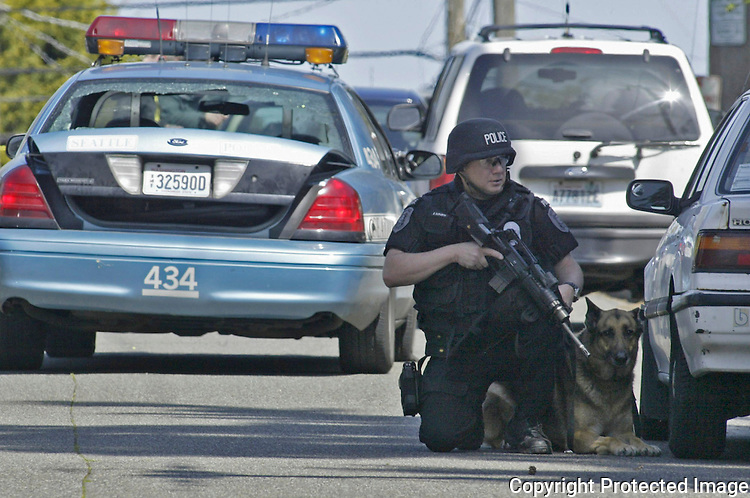 04/23/06 wallingfordshooting23 nws.A SWAT team member and his dog cover for the rest of the team as they search house to house for a suspect in the 9700 block of Wallingford after a Seattle Police Officer was shot in his car about 9:30 this morning. Jim Bryant/P.I. Photo