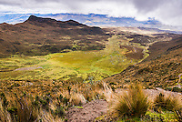 Ruminahui Volcano Valley, Cotopaxi National Park, Avenue of Volcanoes, Ecuador