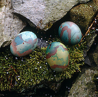 Nestling in a bed of natural moss are three hand-painted eggs