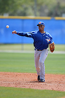 Toronto Blue Jays shortstop Dawel Lugo (20) during a minor league spring training game against the New York Yankees on March 16, 2014 at Englebert Minor League Complex in Dunedin, Florida.  (Mike Janes/Four Seam Images)