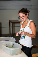 Trimmer Alyson May (cq) trims marijuana buds at a Good Meds Network grow house in Denver, Colorado, Monday, July 21, 2014. <br /> <br /> Photo by Matt Nager