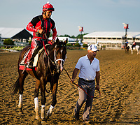BALTIMORE, MD - MAY 18: Trainer Mark Casse walks Classic Empire off the track from training in preparation for the Preakness Stakes at Pimlico Race Course on May 18, 2017 in Baltimore, Maryland.(Photo by Douglas DeFelice/Eclipse Sportswire/Getty Images)