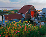 Lunenburg County, Nova Scotia<br /> Evening light on summer flowers and a boat house above the village harbor of Blue Rocks on Lunenburg Bay