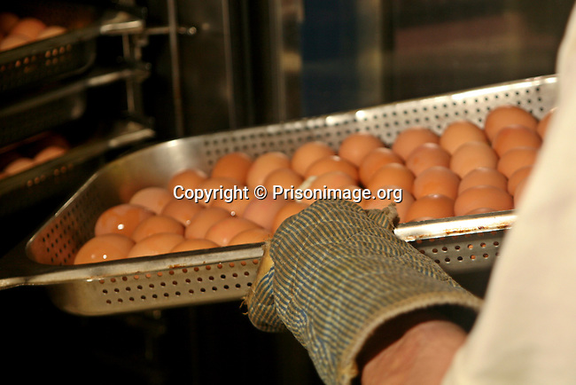 Eight hundred (800) boiled eggs coming out of the steamer, ready for a prison lunch.  HMP Coldingley is a category C training prison and was built in 1969. Coldingley is focussed on the resettlement of prisoners, and all inmates must work a full working week, within the prison grounds.