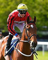 Gravina ridden by William Carson goes down to the start  of The Smith & Williamson Fillies' Novice Stakes (Class 5))  during Afternoon Racing at Salisbury Racecourse on 17th May 2018