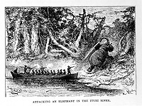 L0027735 Henry M. Stanley, In darkest Africa <br /> Credit: Wellcome Library, London. <br /> &quot;Attacking an elephant in the Ituri River.&quot;<br /> Engraving
