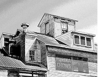 Feed Mill in Taneytown, Maryland with Purina Chows sign.