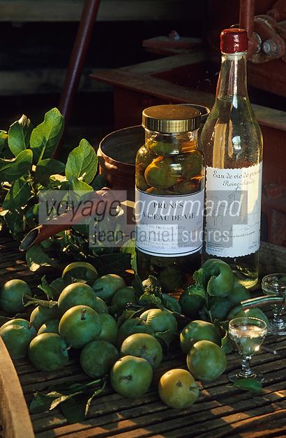 Europe/France/Midi-Pyrénées/46/Lot/Vallée du Céré/Prudhomat: Eau de vie de prune et prunes à l'eau de vie de la distillerie Bergues