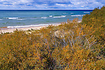 The beautiful beach and Lake Michigan shoreline on a spectacular autumn day near the Big Sable River at Ludington State Park, Ludington, Michigan, USA