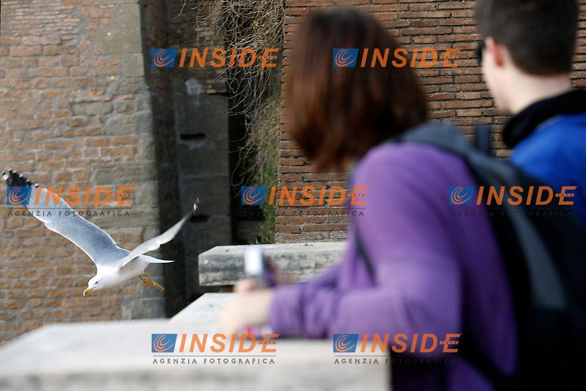 Gabbiano<br /> Roma 18-02-2015 Campidoglio. In occasione del'inizio delle riprese del nuovo 007 a Roma, visita dei due attori al Campidoglio.<br /> Due to the new dil of James Bond, 007, that will be set in Rome, actors Daniel Craig and Monica Bellucci visit the Campidoglio<br /> Photo Samantha Zucchi Insidefoto