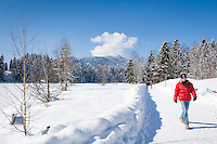 Austria, Tyrol, Reith near Kitzbuhel: winter walk around idyllic lake Schwarzsee on the outskirts of Kitzbuhel, at background Kitzbuhel Alps | Oesterreich, Tirol, Reith bei Kitzbuehel: Winterspaziergang am Schwarzsee, im Hintergrund die Kitzbueheler Alpen