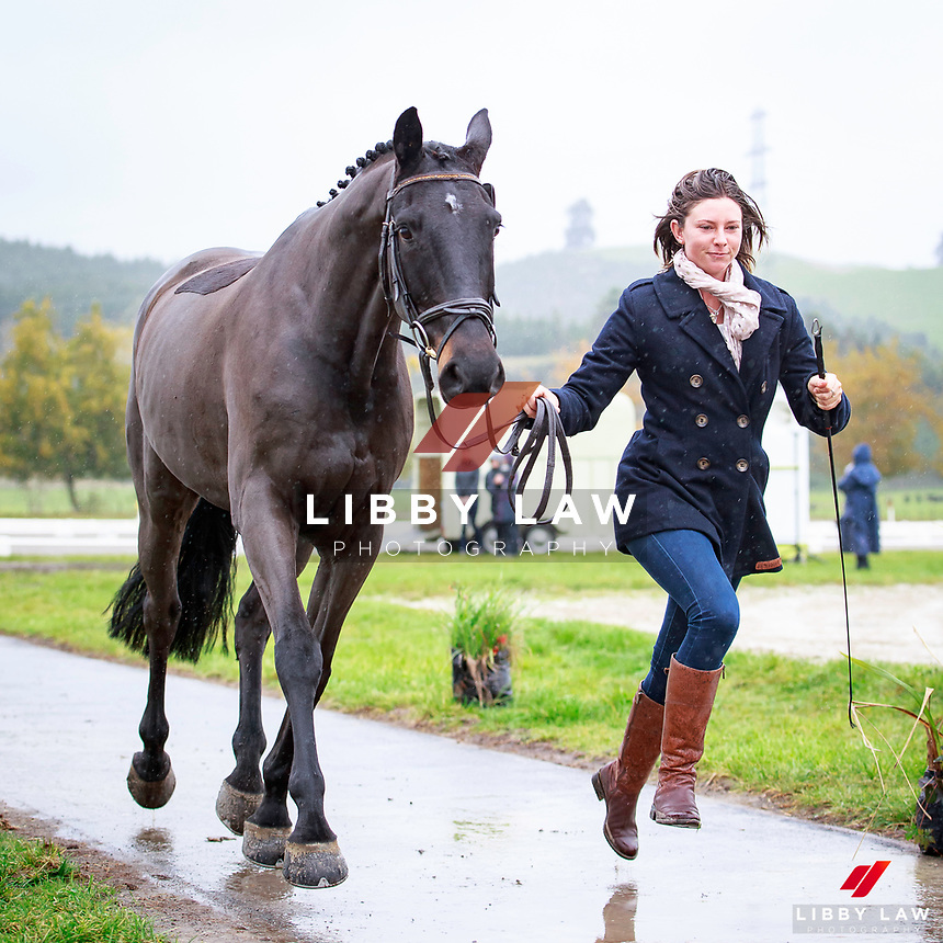 Samantha Felton with Ricker Ridge Sooty during the Fiber Fresh CCI1* Championship 1st Horse Inspection at the 2017 NZL-NRM National Three Day Event Championships. National Equestrian Center, Taupo. Thursday 11 May. Copyright Photo: Libby Law Photography