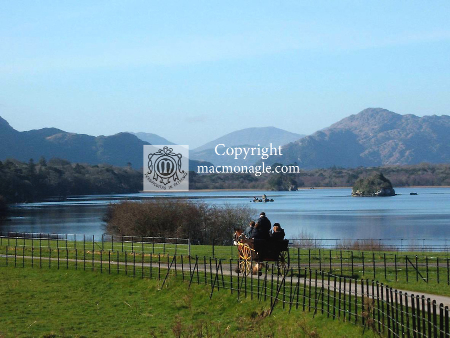 A jaunting car passes Lough Lein (Lower Lake) in Killarney as it travails through Killarney national park..Picture by Don MacMonagle