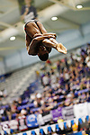 23 MAR 2012: Gabe Dixson of Denison University takes part in the 1-Meter Diving event during the Division III Men's and Women's Swimming and Diving Championship held at the IU Natatorium in Indianapolis, IN. Dixson finished second in the event with a final score of 506:30.  Joe Robbins/NCAA Photos