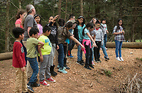 NWA Democrat-Gazette/BEN GOFF @NWABENGOFF<br /> Fourth graders from Brighton Park school in Chicago gather to look at a water snake in a pond Friday, April 13, 2018, at Ozark Natural Science Center near Huntsville. The 4th grade students from Brighton Park, a public charter school, are visiting for a five day immersive environmental education program.