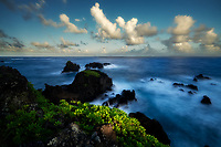 Coast and Naupaka plant, at sunset off area near Venus Pool. Maui, Hawaii