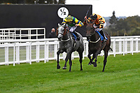 Winner of The St Christopher's Car Sales Bournemouth Supporting Gift Of Sight Handicap, Giving Back ridden by David Probert and trained by Alan King during Evening Racing at Salisbury Racecourse on 3rd September 2019