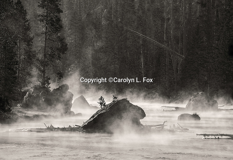 Steam rises from the Firehole River in Yellowstone.